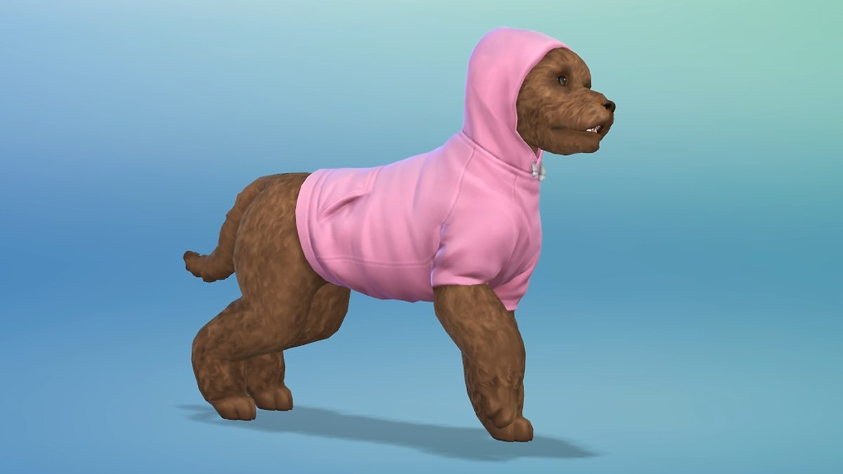 The Sims  Cats And Dogs Mod Glitch